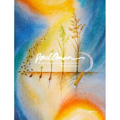 Parable of the Growing Seed - WM
