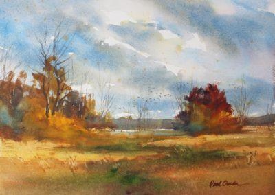 Waterfowl Marsh watercolor Paul Oman